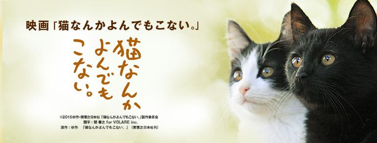 ブルーレイ・DVD 発売/レンタル開始!