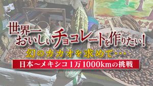 世界一おいしいチョコレートを作りたい!幻のカカオを求めて…日本~メキシコ1万1000kmの挑戦