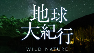 WILD NATURE 地球大紀行