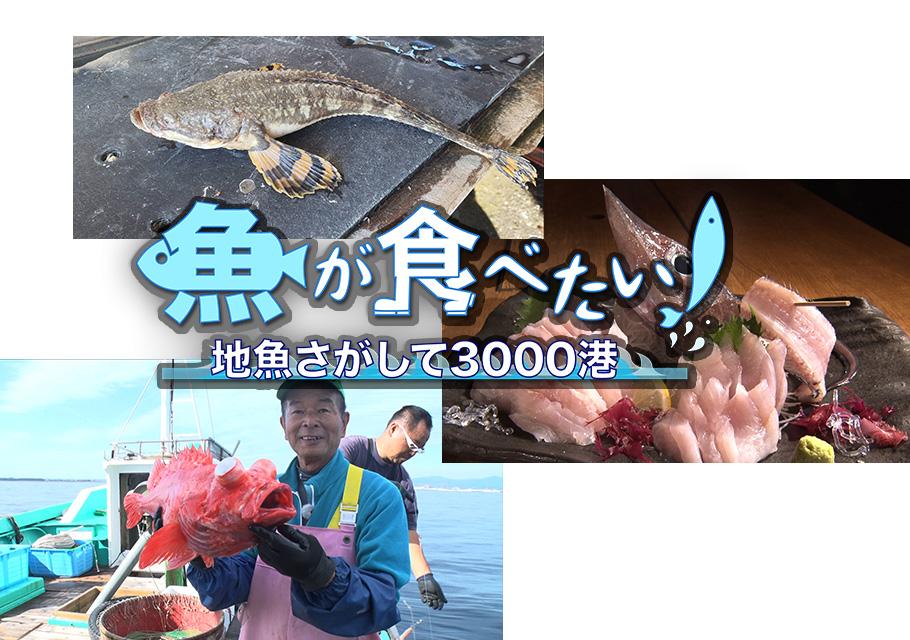 魚が食べたい!2ー地魚探して3000港ー