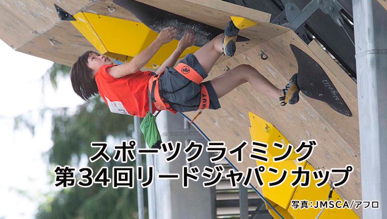 スポーツクライミング 第34回リードジャパンカップ